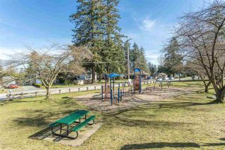 Photo 39: 34115 WALNUT Avenue in Abbotsford: Abbotsford East House for sale : MLS®# R2561854