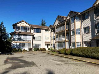 "Photo 28: 210 32145 OLD YALE Road in Abbotsford: Abbotsford West Condo for sale in ""Cypress Park"" : MLS®# R2535627"