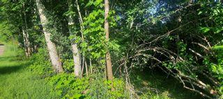 Photo 3: 2027 S Maple Ave in : Sk Sooke Vill Core Land for sale (Sooke)  : MLS®# 877191