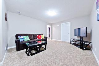 Photo 6: REDSTONE PA NE in Calgary: Redstone House for sale
