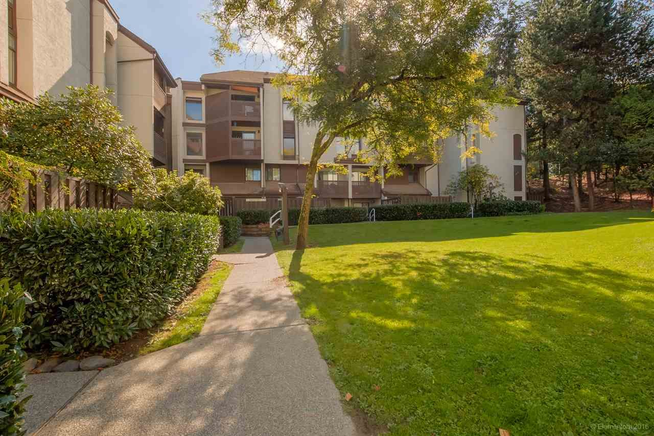 Photo 2: Photos: 408 340 GINGER DRIVE in New Westminster: Fraserview NW Condo for sale : MLS®# R2270133