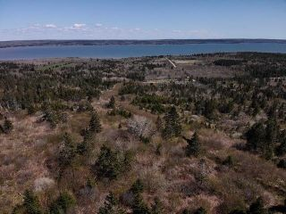 Photo 3: Lot Highway 217 in Rossway: 401-Digby County Vacant Land for sale (Annapolis Valley)  : MLS®# 202111914