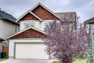 Main Photo: 968 Copperfield Boulevard SE in Calgary: Copperfield Detached for sale : MLS®# A1147601
