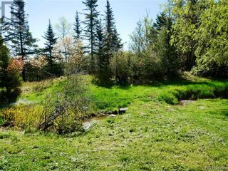 Photo 4: 13 Bates Road in Beaver Harbour: House for sale : MLS®# NB058293