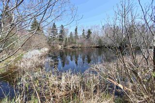 Photo 6: Lots North Range Cross Road in Barton: 401-Digby County Vacant Land for sale (Annapolis Valley)  : MLS®# 202110298