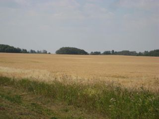 Photo 7: SE 20 30 1 W5 Highway 2A: Carstairs Residential Land for sale : MLS®# A1067588