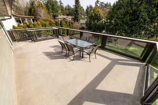 Photo 43: 3969 Sequoia Pl in Saanich: SE Queenswood House for sale (Saanich East)  : MLS®# 872992