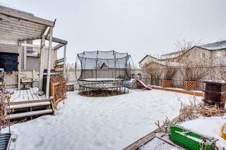 Photo 26: 691 COPPERPOND Circle SE in Calgary: Copperfield Detached for sale : MLS®# A1063241