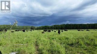 Photo 11: 20052 UPPER HALFWAY ROAD in Fort St. John (Zone 60): Agriculture for sale : MLS®# C8037586
