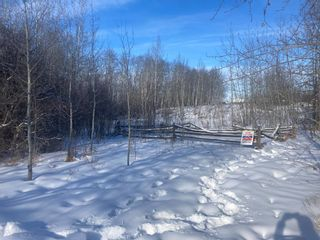 Photo 2: 5303 48 Street: Alix Residential Land for sale : MLS®# A1069835