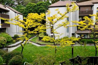 Photo 20: 6 385 GINGER Drive in New Westminster: Fraserview NW Townhouse for sale : MLS®# R2585525