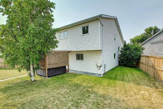 Photo 41: 94 Erin Meadow Close SE in Calgary: Erin Woods Detached for sale : MLS®# A1135362