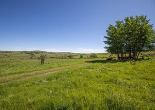 Photo 14: 498 Ave W & Hwy 22: Rural Foothills County Land for sale : MLS®# C4302344