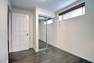 Photo 17: 12 Saddlecreek Terrace NE in Calgary: Saddle Ridge Detached for sale : MLS®# A1141448
