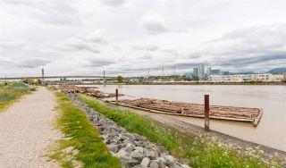 Photo 32: 505 10011 RIVER DRIVE in Richmond: Bridgeport RI Condo for sale : MLS®# R2500259