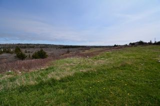 Photo 8: 10310 HIGHWAY 1 in Saulnierville: 401-Digby County Residential for sale (Annapolis Valley)  : MLS®# 202110358
