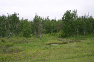 Photo 13: Lot 17 Con 2 in Amaranth: Rural Amaranth Property for sale : MLS®# X4680333