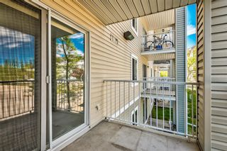 Photo 29: 3209 1620 70 Street SE in Calgary: Applewood Park Apartment for sale : MLS®# A1116068