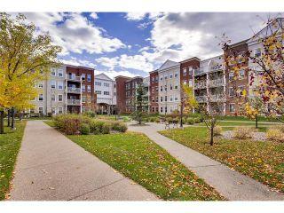 Photo 23: 4403 5605 HENWOOD Street SW in Calgary: Garrison Green Condo for sale : MLS®# C4090852