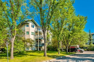 Main Photo: 114 11 Dover Point SE in Calgary: Dover Apartment for sale : MLS®# A1125915