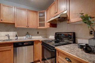 Main Photo: 201 1808 18 Street SW in Calgary: Bankview Apartment for sale : MLS®# A1148984
