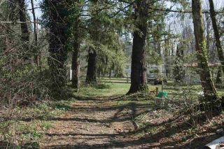 Photo 17: 10235 PARKE ROAD in Mission: Dewdney Deroche House for sale : MLS®# R2353727