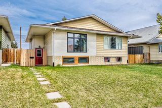 Photo 1: 114 Dovertree Place SE in Calgary: Dover Semi Detached for sale : MLS®# A1071722