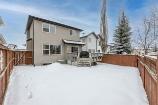 Photo 45: 218 Citadel Estates Heights NW in Calgary: Citadel Detached for sale : MLS®# A1073661