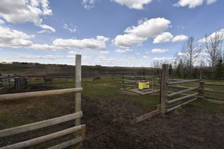Photo 5: 275033 RANGE ROAD 22 in Rural Rocky View County: Rural Rocky View MD Detached for sale : MLS®# A1106587