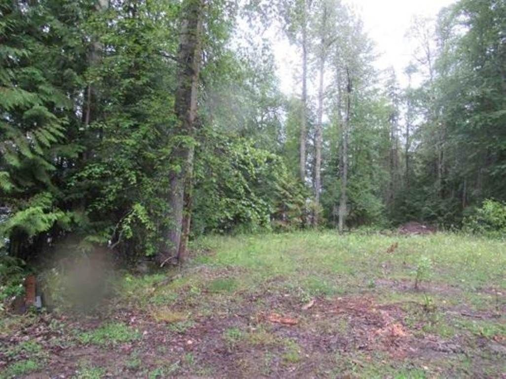 """Photo 15: Photos: LOT 3 HAGGENS POINT Road: Horsefly Land for sale in """"QUESNEL LAKE"""" (Williams Lake (Zone 27))  : MLS®# R2398733"""