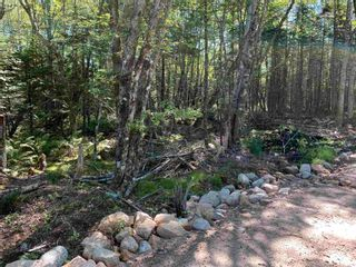 Photo 2: Lot 2 Parkwood Drive in Mill Cove: 405-Lunenburg County Vacant Land for sale (South Shore)  : MLS®# 202123260