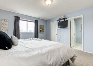 Photo 27: 95 Tipping Close SE: Airdrie Detached for sale : MLS®# A1099233
