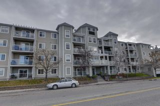 Main Photo: 206 270 Shawville Way SE in Calgary: Shawnessy Apartment for sale : MLS®# A1157580