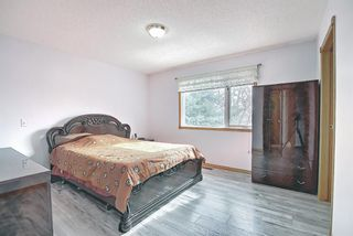 Photo 44: 128 Eldorado Close NE in Calgary: Monterey Park Detached for sale : MLS®# A1116586
