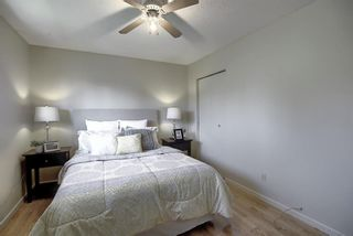 Photo 15: 48 DOVERTHORN Place SE in Calgary: Dover Detached for sale : MLS®# A1023255