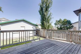 Photo 36: 86 Harvest Gold Circle NE in Calgary: Harvest Hills Detached for sale : MLS®# A1143410