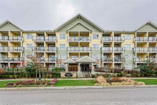 """Photo 1: 402 5020 221A Street in Langley: Murrayville Condo for sale in """"Murrayville House"""" : MLS®# R2537079"""