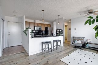 Photo 8: 6 210 Village Terrace SW in Calgary: Patterson Apartment for sale : MLS®# A1080449