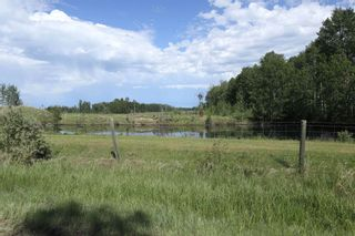 Photo 42: 461015 RR 75: Rural Wetaskiwin County House for sale : MLS®# E4249719