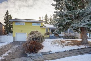 Photo 2: 11 Celtic Road NW in Calgary: Cambrian Heights Detached for sale : MLS®# A1050737