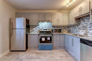 Photo 3: 563 Aboyne Crescent NE in Calgary: Abbeydale Semi Detached for sale : MLS®# A1071517