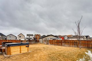 Photo 43: 92 COPPERPOND Mews SE in Calgary: Copperfield Detached for sale : MLS®# A1084015