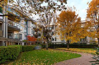 Photo 4: 303 2968 Burlington Drive in The Burlington: Home for sale : MLS®# V920053