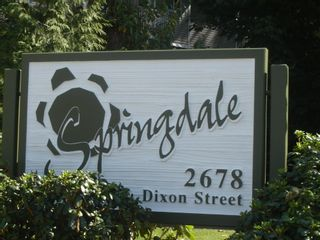 Photo 12: 416A 2678 DIXON Street in Springdale: Central Pt Coquitlam Home for sale ()  : MLS®# V830986