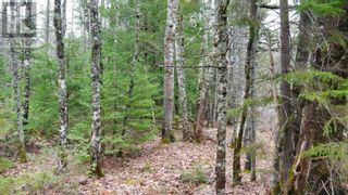 Photo 5: Lot Medway River Road in Mill Village: Vacant Land for sale : MLS®# 202108227