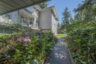 """Photo 19: 209 5577 SMITH Avenue in Burnaby: Central Park BS Condo for sale in """"COTTONWOOD GROVE"""" (Burnaby South)  : MLS®# R2495074"""