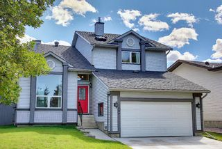 Main Photo: 24 Mckinley Rise SE in Calgary: McKenzie Lake Detached for sale : MLS®# A1146333