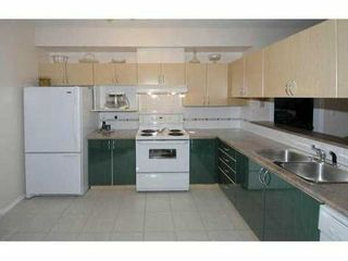 Photo 5: 208 83 Star Crescent in New Westminster: Queensborough Condo for sale : MLS®# v985086