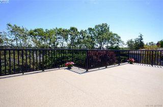 Photo 11: 913 Nicholson St in VICTORIA: SE High Quadra House for sale (Saanich East)  : MLS®# 789694