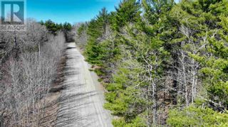 Photo 7: Lot 2 Labelle Road in Molega: Vacant Land for sale : MLS®# 202108292